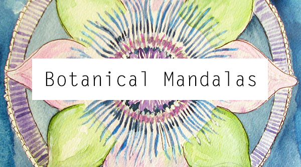 Botanical Mandalas Portfolio of Artwork