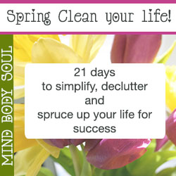 Spring Clean Your Life clutter energy space clearing wheel of life