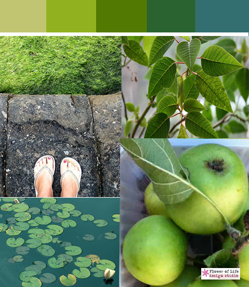 Green color stories, shades of green, lime, grass, forest, apple, sea green, lillies, leaves, leaf