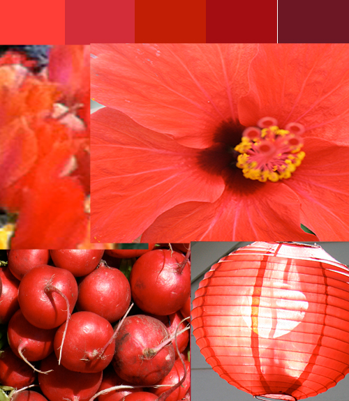 Color stories red, vibrant, root chakra,