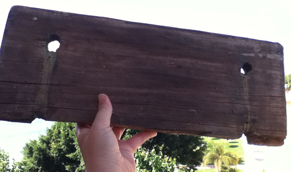 plank of wood, nature, found object
