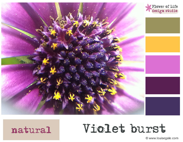 Creative Color Challenge October 2013 {Violet bursts}