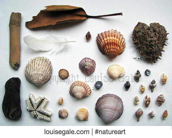 Nature found & poem #natureart