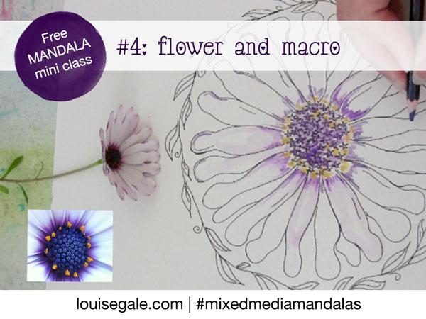 Free mandala class part 4: flower & macro photography inspired