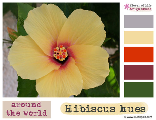 Color Palette: Hibiscus yellow