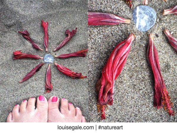hibiscusbudminimandala