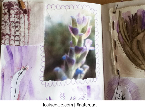 lavenderpages1forblog