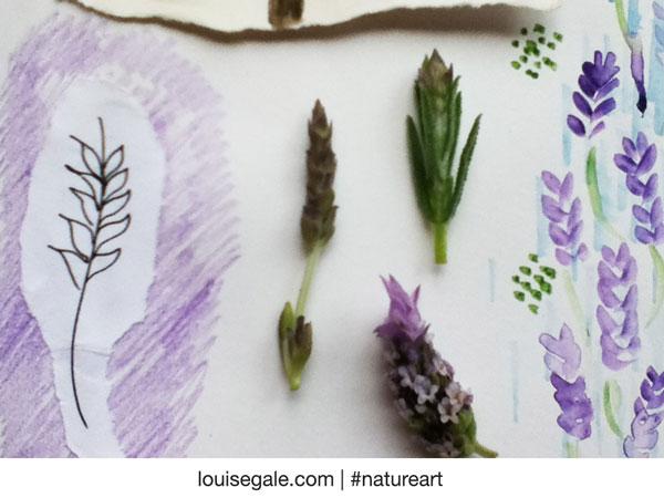 lavenderpages5&sprigsforblog