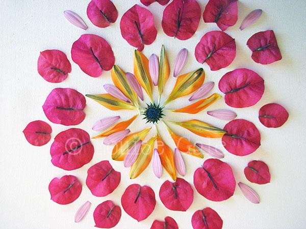 flowermandala2_600pxlsCR