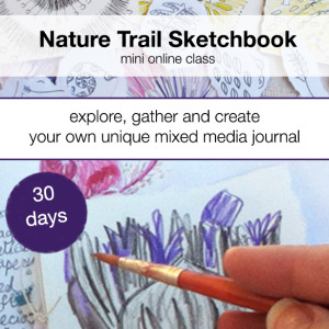 naturetrail sketchbook