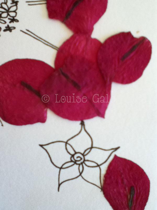 petals&sketchCR