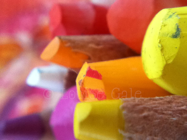 warm crayons ©Louise Gale