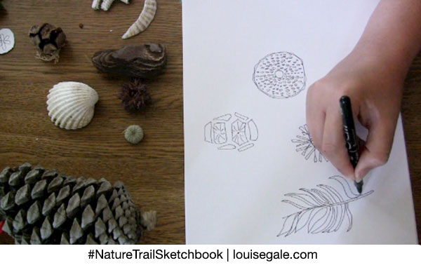 Nature Trail Sketchbook Collections ©Louisegale.com #NatureTrailSketchbook