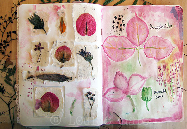 Watercolour and pressed flowers page ©Louisegale.com #NatureTrailSketchbook