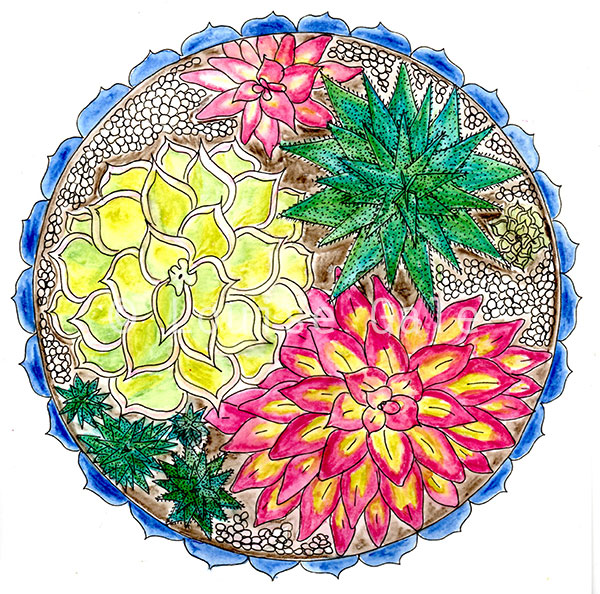 succulent mandala group ©Louise Gale