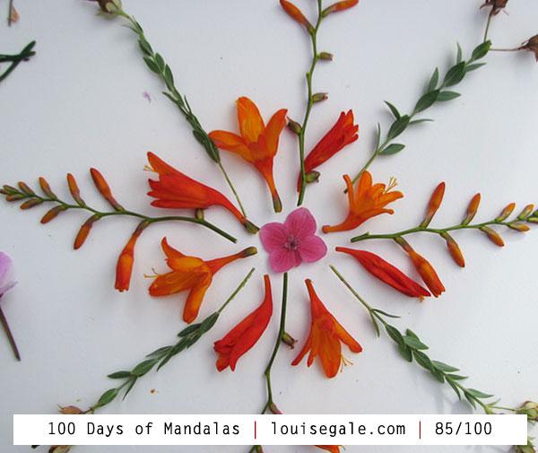100 days of mandalas mixed media mandalas mandala art class nature mandala