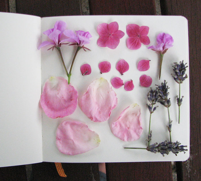 flower press page Louise Gale