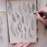 drawingfeathers