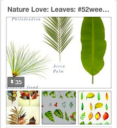 leaves pinterest for 52 weeks of nature inspired art