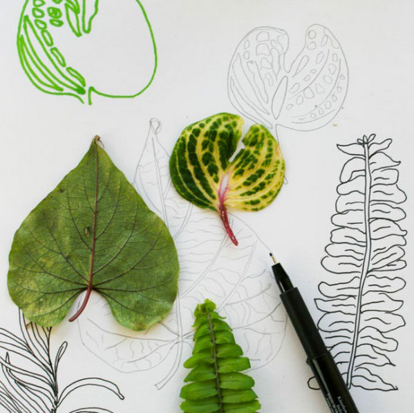 sketchbook leaf drawings for 52 weeks of nature inspired art