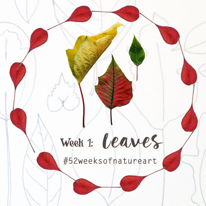 week 1 leaves 52 weeks of nature inspired art
