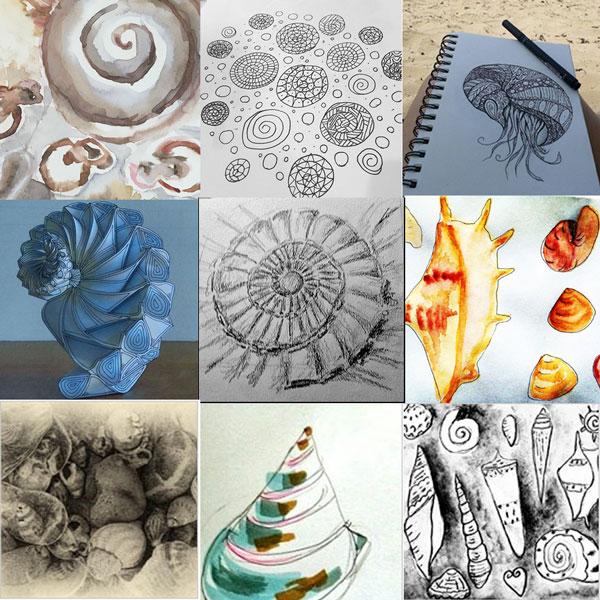 participant shells 52 weeks of nature art