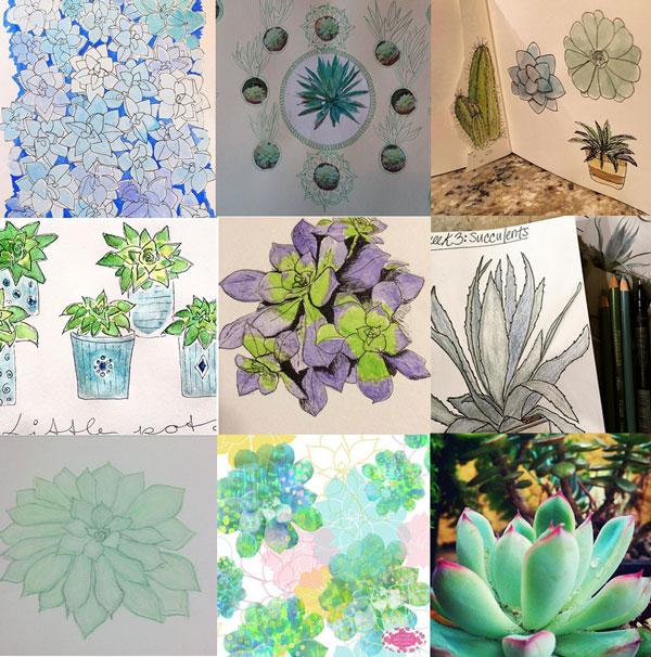 participant art succulents 52 weeks of nature art