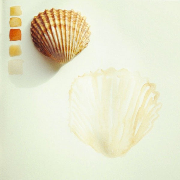 shell watercolor 52 weeks of nature art
