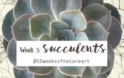Week 3: Succulents – Wrap up {52 Weeks of Nature Inspired Art}