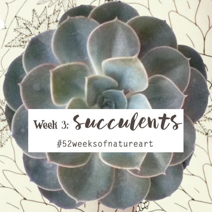 succulents 52 weeks of nature art