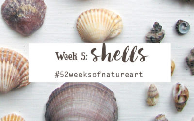 Week 5: Shells – Wrap up {52 Weeks of Nature Inspired Art}