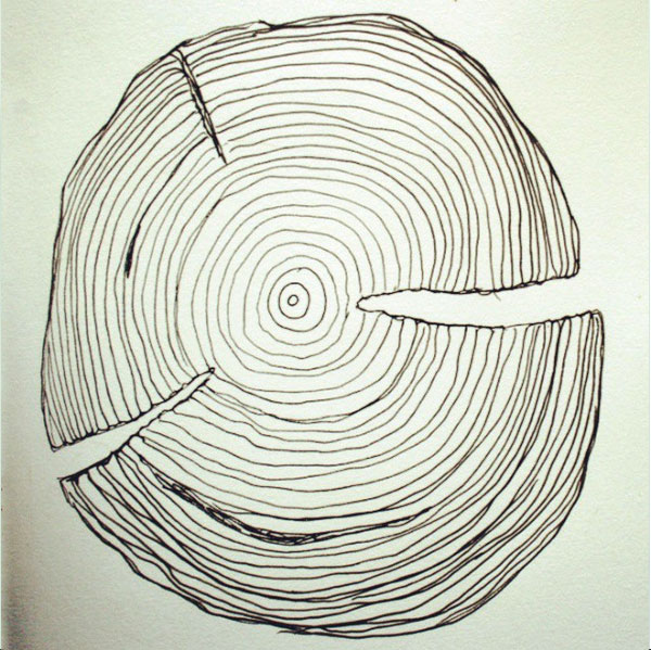 wood grain drawing 52 weeks of nature art
