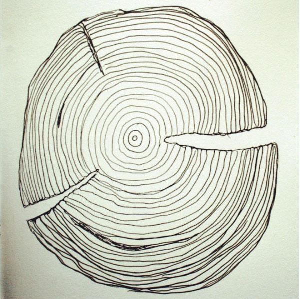 wood grain drawing 52 weeks of nature art
