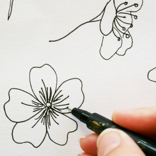 drawing blossom motifs for sketch and paint sketchbook online class