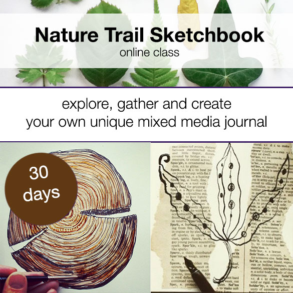 nature Trail Sketchbook Louise Gale