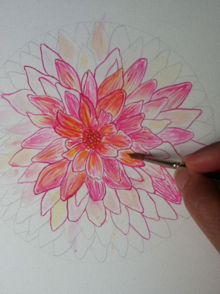 Dahlia Botanical Mandala by Louise Gale