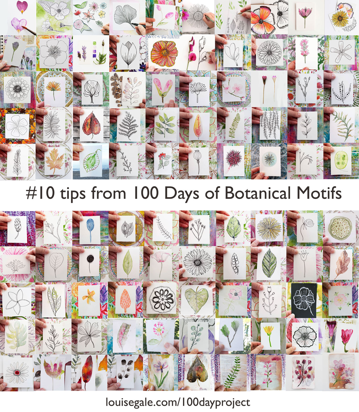10 tips from the 100 days of botanical motifs with Louise Gale