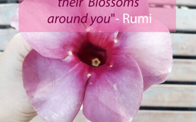 Hear Blessings Dropping Their Blossoms…. A Poem ❤️